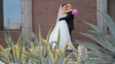 Young Happy Newlyweds Embracing And Kissing Each Other — Stock Video