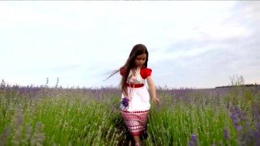 Девушка делает кучу лаванды — Стоковое видео