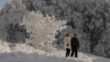 Чудесный зимний — Стоковое видео