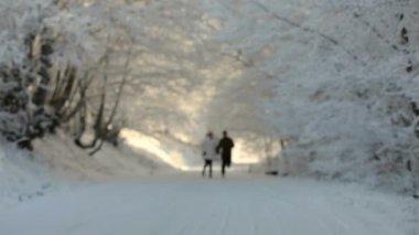 Два человека работают в снегу — Стоковое видео