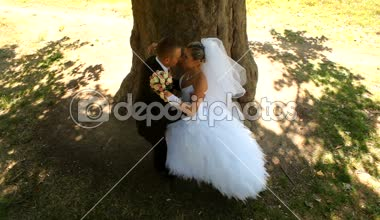 Newlyweds Kissing Under A Tree — Stock Video