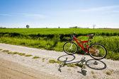 Mountainbike på landsväg — Stockfoto