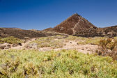 Volcanic landscape. Fuerteventura — Stock Photo