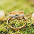 Cool rings and earrings — Stock Photo #76503215