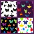 Seamless patterns with beautiful butterflies — Stock Vector #77093031