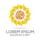 Logo beauty sunflower flora concept natural vector — Stock Vector