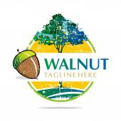 Logo walnut trees hazelnut freshness delicious vector — Stock Vector