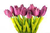 Букет из искусственной тюльпанов, изолированные — Стоковое фото