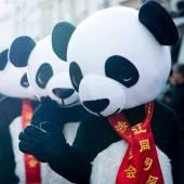 Çin yeni yılı parade — Stok fotoğraf