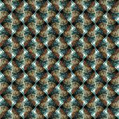 Vzor hadí kůže prvky — Stock fotografie