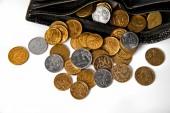 Κέρματα και πορτοφόλι — Φωτογραφία Αρχείου