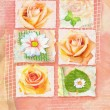 Congratulations card with pictures of flowers on separate plots and hand written text on abstract apricot background. Can be used as greeting card, invitation for wedding, birthday and other holiday. — Stock Photo #79443570
