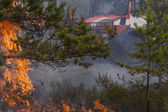 Fire engine behind forest fire flames and smoke — Stock Photo