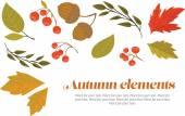 Autumn decorative set — Stock Vector