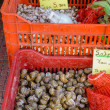 Retail sale of snails in red crates on a stall of Piraeus port — Stock Photo #78508486