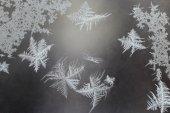Unusual frost on a winter window — Stock Photo