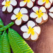 Stone carving of a Plumeria flower — Stock Photo #78062960