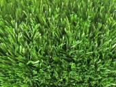 Green Fence — Stock Photo