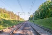 A railway Track going through Trees. — Stock Photo