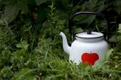 Teapot 2 — Stock Photo
