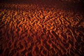 Footprints in the Desert — Stock Photo