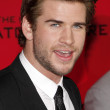 Постер, плакат: Liam Hemsworth at the Los Angeles