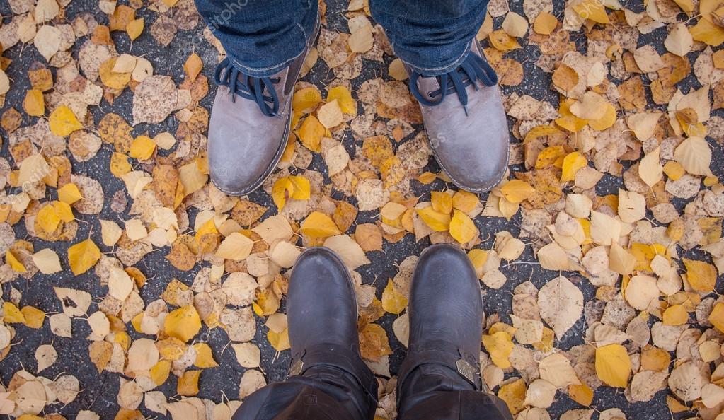 Картинки природы осенние листья
