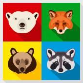 Set of animals with Flat Design. Symmetrical portraits of animals. Vector Illustration. Polar bear, raccoon, red fox, brown bear. A set of symmetric vector portraits animals. Icon Set. Animal face. — Stock Vector