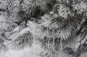 Freezing — Stock Photo