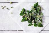 The leaves and flowers of fresh mint on the table, top view — Stock Photo