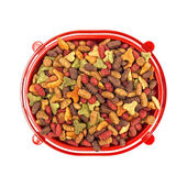 Multicolored dry cat or dog food in red bowl isolated on white — Stock Photo