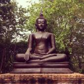 Buddha statue in forest — Stock Photo