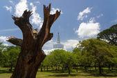 RUWANWELISAYA stupa — Foto Stock
