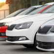 Постер, плакат: New cars for sale parked in front of a car motor dealer store shop