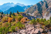 Landscape in the mauntains Tian Shan — Stock Photo