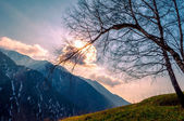 Landscape in the mauntains — Stock Photo