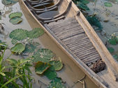 Wooden Handmade Canoe Boat in Asian Lily Pond — Stock Photo