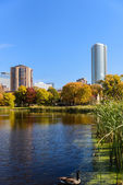 Loring Park in Autumn — Stock Photo
