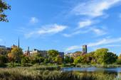 Loring Park in Autumn 5 — Stock Photo