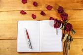 Suszone róże z książki i pióra — Zdjęcie stockowe