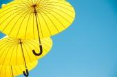 Yellow umbrellas — Stock Photo