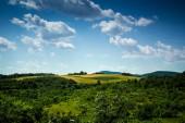 Tapety z Rumunii — Zdjęcie stockowe
