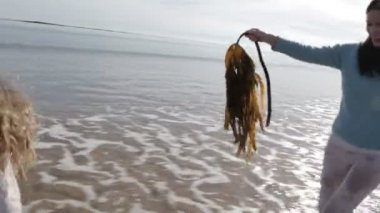 Mother Chasing her Daughter on the Beach with Seaweed — Stock Video