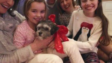 Dogs christmas treat — Stock Video