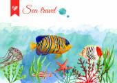 Set of marine fish — Stock Vector