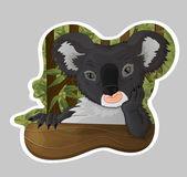 Koala pensativo en bosque de eucaliptos — Vector de stock