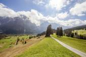 Mountain peaks, green grass and water streams in Grindelwald, Switzerland — Stock Photo