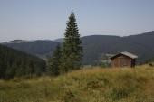 Schwarzwald — Foto Stock