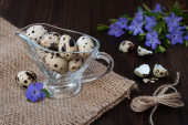 Quail eggs in a glass gravy boat and periwinkle flowers on an old rustic wooden table. Easter concept — Stock Photo