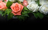 Still life decorated orange and white roses — Stock Photo